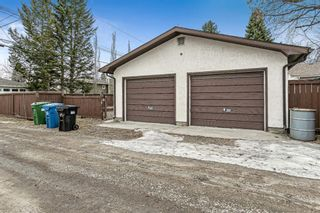 Photo 23: 8304 43 Avenue NW in Calgary: Bowness Detached for sale : MLS®# A1093020