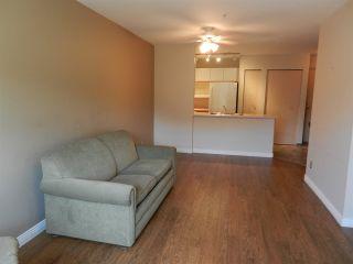 "Photo 7: 208 20561 113 Avenue in Maple Ridge: Southwest Maple Ridge Condo for sale in ""WARESLY"" : MLS®# R2302376"