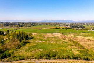 Photo 5: 26164 16 Avenue in Langley: Otter District Land for sale : MLS®# R2572641
