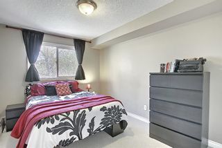 Photo 20: 306 420 3 Avenue NE in Calgary: Crescent Heights Apartment for sale : MLS®# A1105817