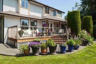 """Photo 35: 21630 45 Avenue in Langley: Murrayville House for sale in """"Murrayville"""" : MLS®# R2547090"""