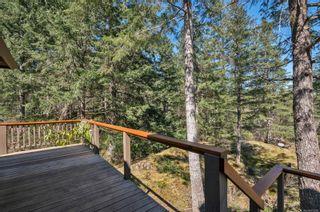 Photo 19: 855 Hope Spring Rd in : Isl Quadra Island House for sale (Islands)  : MLS®# 873398