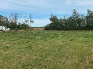 Photo 29: TWP RD 583 Range Rd 271: Rural Westlock County Rural Land/Vacant Lot for sale : MLS®# E4218433