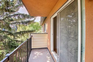 Photo 22: 302 1530 16 Avenue SW in Calgary: Sunalta Apartment for sale : MLS®# A1139864