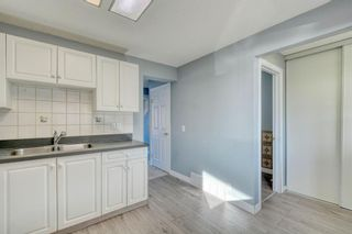 Photo 4: 375 Falshire Way NE in Calgary: Falconridge Detached for sale : MLS®# A1089444