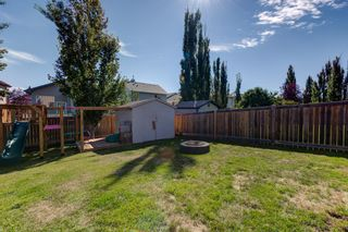 Photo 42: 227 HENDERSON Link: Spruce Grove House for sale : MLS®# E4262018