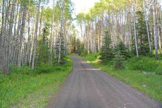 """Photo 3: DECEPTION LAKE FOREST SERVICE ROAD: Telkwa Land for sale in """"WOODMERE"""" (Smithers And Area (Zone 54))  : MLS®# R2398092"""