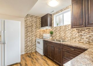 Photo 7: 3411 Doverthorn Road SE in Calgary: Dover Semi Detached for sale : MLS®# A1126939