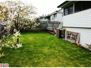 Photo 10: 3538 TOWNLINE Road in Abbotsford: Abbotsford West House for sale : MLS®# F1009047