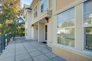 Photo 2: 14 7077 EDMONDS Street in Burnaby: Highgate Townhouse for sale (Burnaby South)  : MLS®# R2619133