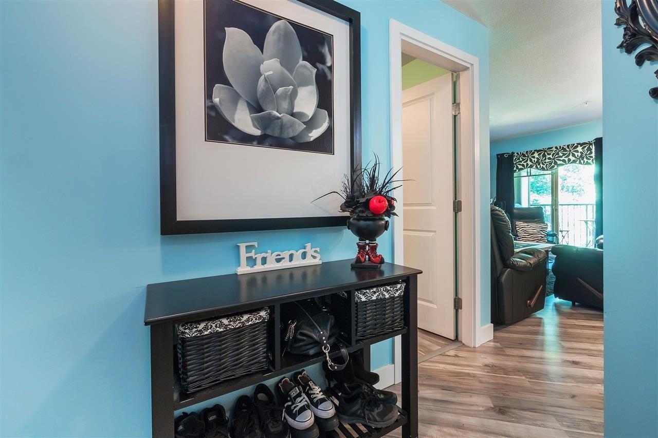 "Main Photo: 321 12248 224 Street in Maple Ridge: East Central Condo for sale in ""URBANO"" : MLS®# R2428227"