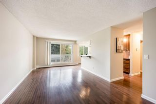 Photo 5: 202 4455C Greenview Drive NE in Calgary: Greenview Apartment for sale : MLS®# A1110677