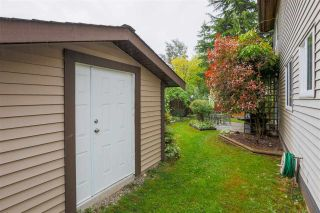 Photo 21: 8126 122 STREET in Surrey: Queen Mary Park Surrey House for sale : MLS®# R2588558