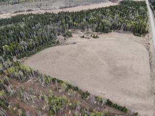 Photo 5: TWP Rd 310: Rural Mountain View County Land for sale : MLS®# C4292828