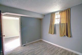 Photo 23: 10061 94 Street NW in Edmonton: Zone 13 House for sale : MLS®# E4266327