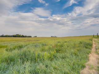 Photo 8: 14ac NORTH of DUNBOW Rd 48 Street: Rural Foothills County Residential Land for sale : MLS®# A1092764