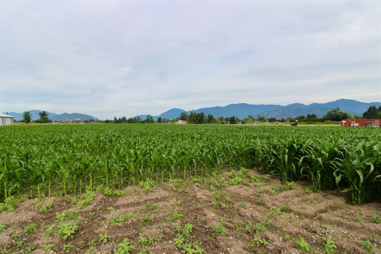 Photo 9: Photos: 9127 PREST Road in Chilliwack: East Chilliwack House for sale : MLS®# R2287442