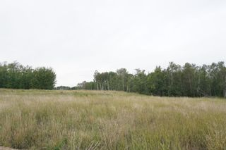 Photo 12: 14 53214 RR13: Rural Parkland County Rural Land/Vacant Lot for sale : MLS®# E4266456