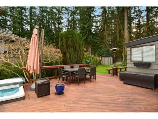 """Photo 5: 2624 140 Street in Surrey: Sunnyside Park Surrey House for sale in """"Elgin / Chantrell"""" (South Surrey White Rock)  : MLS®# F1435238"""