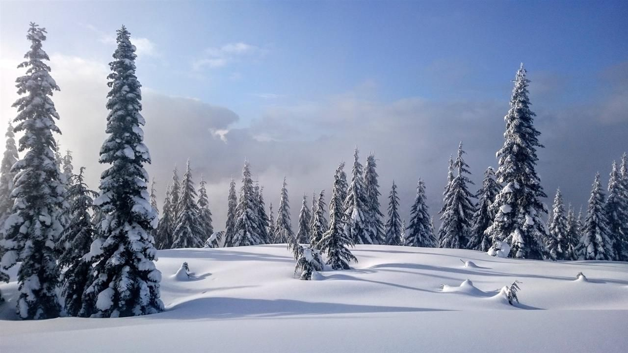 "Main Photo: 20716 SAKWI CREEK Road in Mission: Hemlock Land for sale in ""Hemlock Valley Ski Resort"" : MLS®# R2176457"