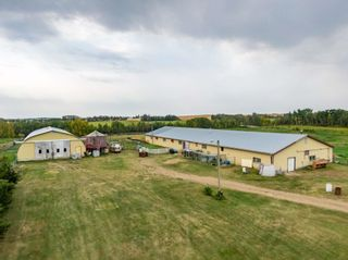 Photo 46: 472027 RR223: Rural Wetaskiwin County House for sale : MLS®# E4259110