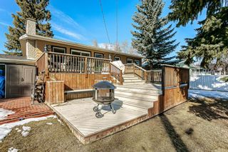 Photo 20: 184 MAPLE COURT Crescent SE in Calgary: Maple Ridge Detached for sale : MLS®# A1080744