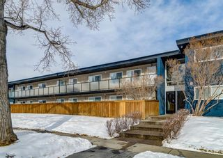 Photo 27: 15 3208 19 Street NW in Calgary: Collingwood Apartment for sale : MLS®# A1072445