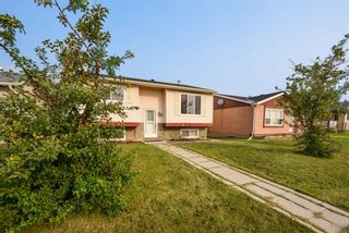 Photo 8: 235 Falwood Way NE in Calgary: Falconridge Detached for sale : MLS®# A1134776