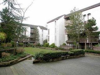 """Photo 8: 14 365 GINGER DR in New Westminster: Fraserview NW Townhouse for sale in """"FRASER MEWS"""" : MLS®# V527473"""