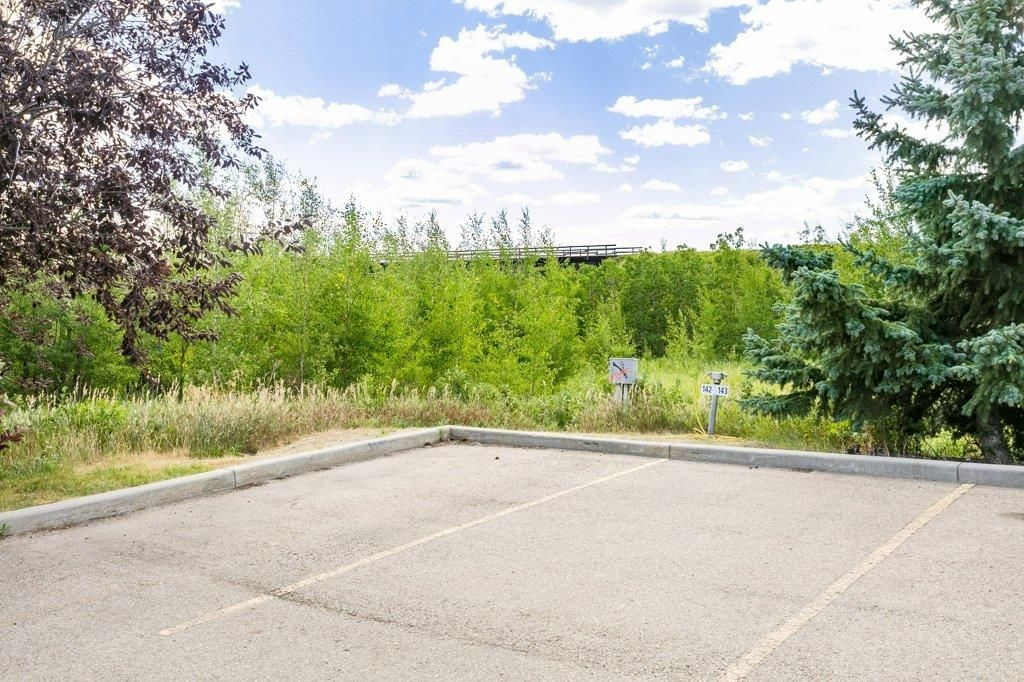 Photo 26: Photos: 403 1188 HYNDMAN Road in Edmonton: Zone 35 Condo for sale : MLS®# E4259060