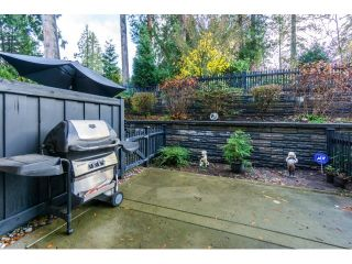 """Photo 19: 21 21867 50 Avenue in Langley: Murrayville Townhouse for sale in """"Winchester"""" : MLS®# R2009721"""