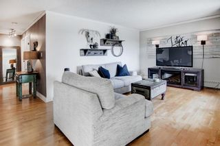 Photo 6: 1013 8604 48 Avenue NW in Calgary: Bowness Apartment for sale : MLS®# A1107613