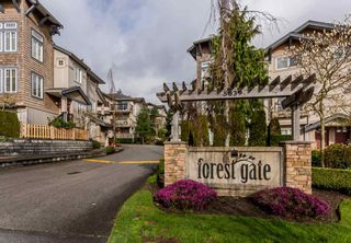 """Photo 1: 17 5839 PANORAMA Drive in Surrey: Sullivan Station Townhouse for sale in """"Forest Gate"""" : MLS®# R2046887"""