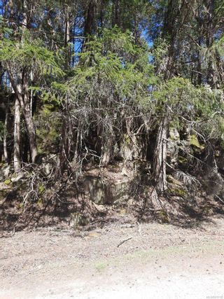 Photo 1: Lot 163 Halibut Hill Rd in : Isl Mudge Island Land for sale (Islands)  : MLS®# 870132
