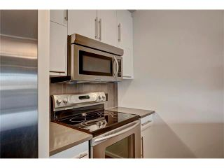 Photo 14: 105 414 MEREDITH Road NE in Calgary: Crescent Heights Condo for sale : MLS®# C4050218