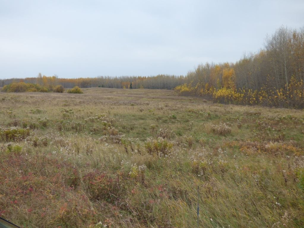 Photo 21: Photos: N1/2 SE19-57-1-W5: Rural Barrhead County Rural Land/Vacant Lot for sale : MLS®# E4217154