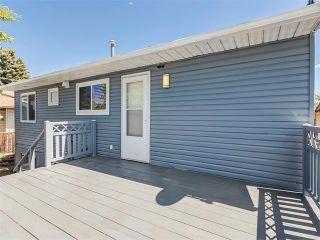 Photo 38: 75 WHITMAN Crescent NE in Calgary: Whitehorn House for sale : MLS®# C4074326