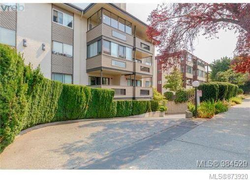 Main Photo: 203 1619 Morrison St in : Vi Jubilee Condo for sale (Victoria)  : MLS®# 873920