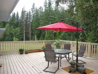 Photo 13: 29907 DEWDNEY TRUNK Road in Mission: Stave Falls House for sale : MLS®# R2250295