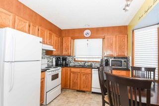 Photo 21: 1244 Berkley Drive NW in Calgary: Beddington Heights Detached for sale : MLS®# A1118414
