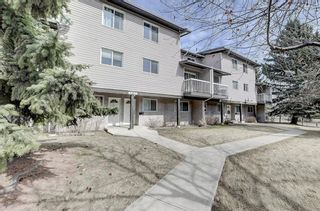 Photo 2: 7 3800 Fonda Way SE in Calgary: Forest Heights Row/Townhouse for sale : MLS®# A1090503