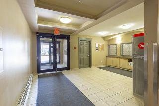 Photo 27:  in Edmonton: Zone 55 Condo for sale : MLS®# E4244419