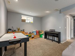 Photo 35: 17 ROYAL ELM Way NW in Calgary: Royal Oak Detached for sale : MLS®# A1034855