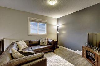 Photo 22: 135 EVANSPARK Terrace NW in Calgary: Evanston Detached for sale : MLS®# C4293070