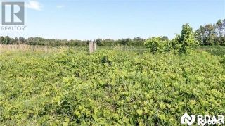 Photo 4: PT LT 20 CONCESSION 7 Concession in Oro-Medonte: Agriculture for sale : MLS®# 30792379