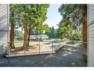 "Photo 21: 117 9635 121 Street in Surrey: Cedar Hills Condo for sale in ""CHANDLER HILL"" (North Surrey)  : MLS®# R2595653"