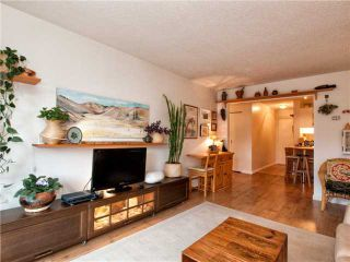 Photo 5: 102 225 W 3RD Street in North Vancouver: Lower Lonsdale Condo for sale : MLS®# V976777