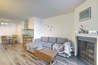 Photo 14: 4103, 315 Southampton Drive SW in Calgary: Southwood Apartment for sale : MLS®# A1072279