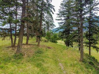 Photo 87: 9373 YELLOWHEAD HIGHWAY in Kamloops: McLure/Vinsula House for sale : MLS®# 162707