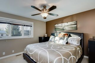Photo 8: 8 Mckenna Road SE in Calgary: McKenzie Lake Detached for sale : MLS®# A1049064